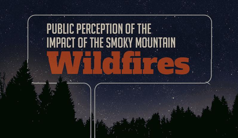 Smoky Mountain Wildfire Perception